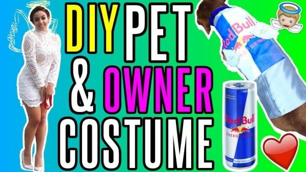 Diy Angel & Red Bull Halloween Costume! Pet And Owner