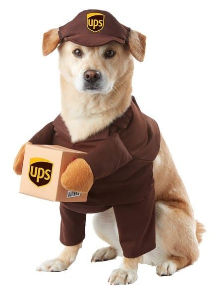 Amazon Com  California Costumes Ups Pal Pet Costume