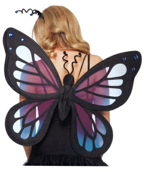 Adult Butterfly Fairy Wings