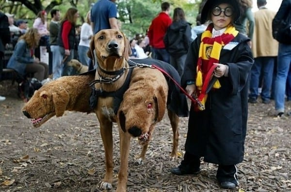 9 Geeky Halloween Costumes For Man And Beast