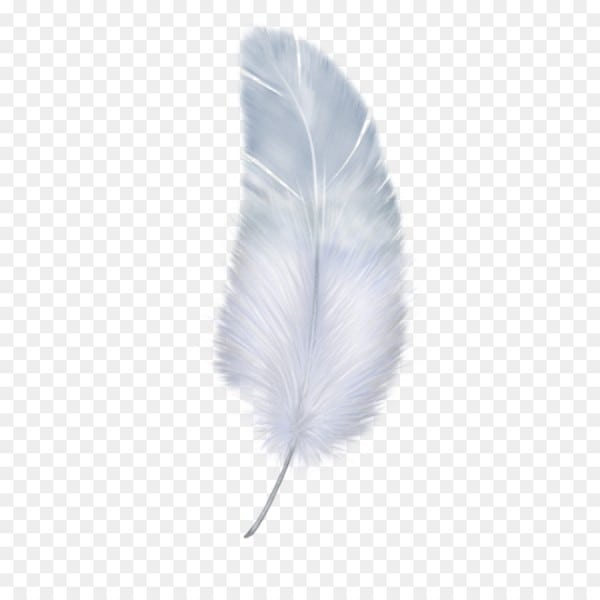 Feather Wing White
