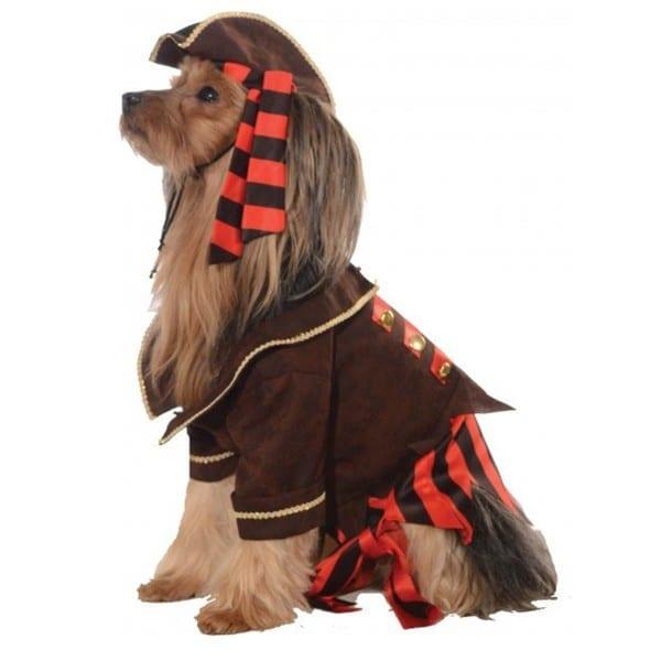 Rubies Pirate Boy Dog Costume