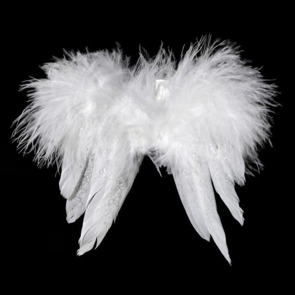 White Feather Wings On Clip