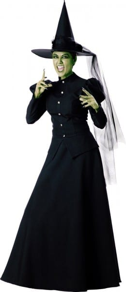 Wicked Witch Elite Adult Costume In 2018