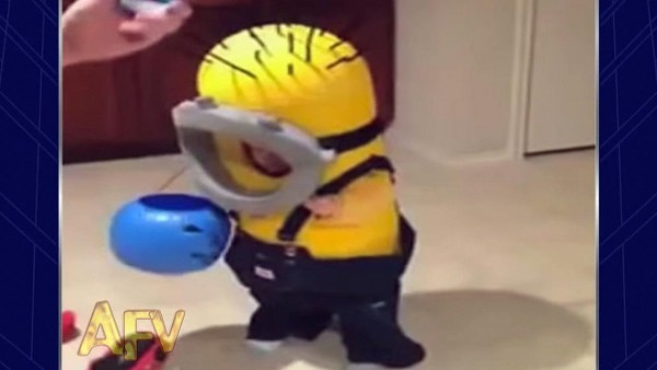 Funny Video  This Little Boy Wins Halloween In Epic Costume Fail