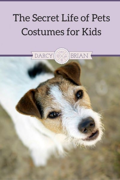 The Secret Life Of Pets Halloween Costumes For Kids