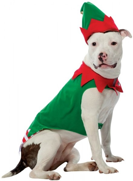 Christmas Dog Costumes