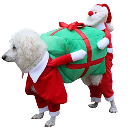 Info For 33cdf 9b747 Dog Christmas Outfits