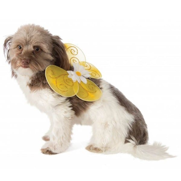 Bumble Bee Fairy Wings Dog Costume