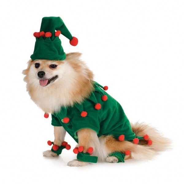 Christmas Dog Costume Picture Dog Christmas – Pet Collection World