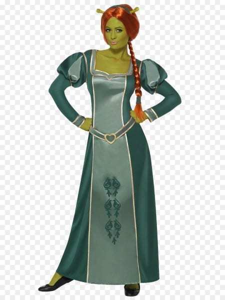 Princess Fiona Donkey Shrek The Musical Costume Party