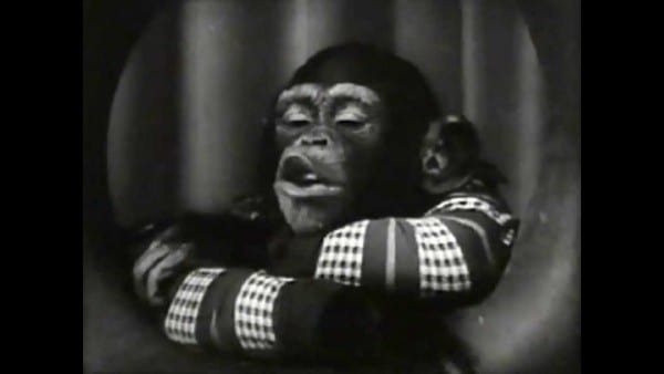 General Tire Retro Commercial  2 W  Sam The Chimp