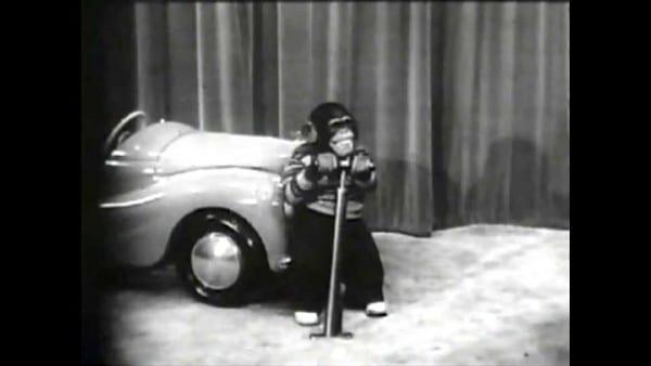 General Tire Retro Commercial W  Sam The Chimp
