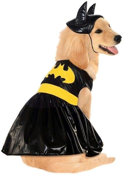 Dc Heroes Batgirl Pet Costume