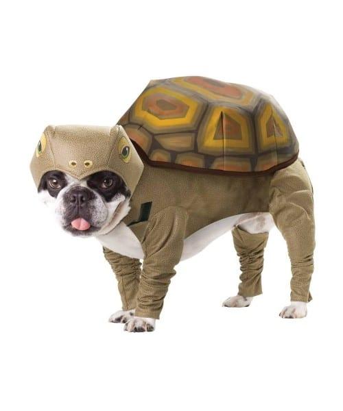 Turtle Dog Pet Costume