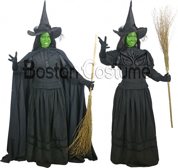 Wicked Witch Costume At Boston Costume