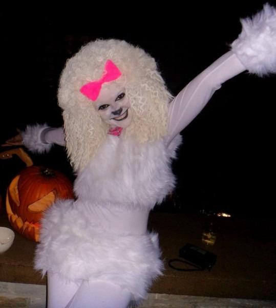 Halloween Costume  French Poodle  Halloween  Costume  Homemade