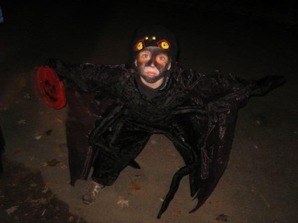 Milo's Scary Spider Costume