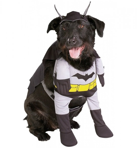 Amazon Com   Batman Dog Pet Costume