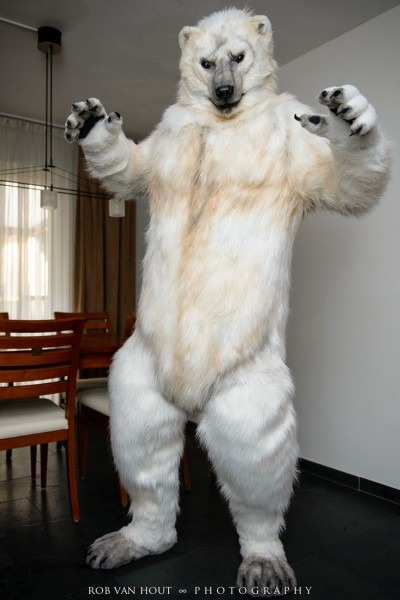 90 Best Fursuits Images On Best Party Supply