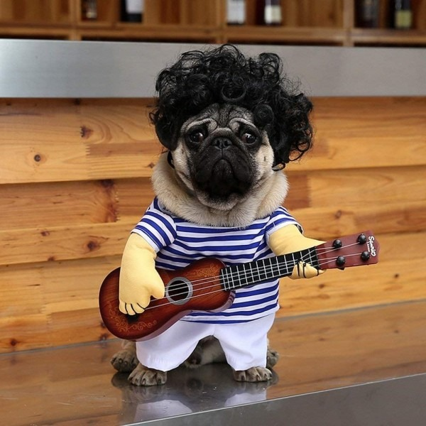 Amazon Guitar Dog Costume Clothes For Dogs Funny Pet Halloween