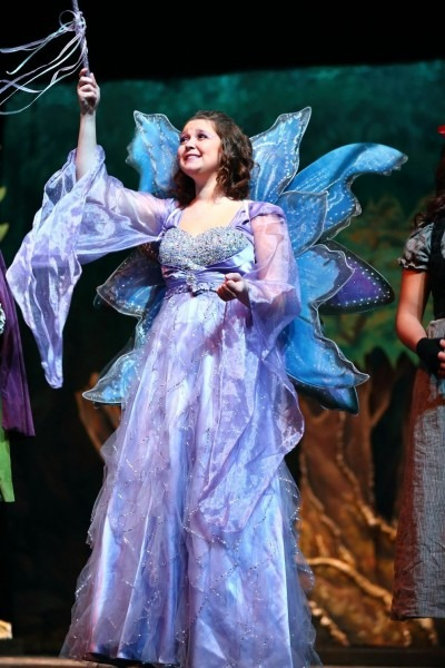 Cinderella And Shrek The Musical Fairy Godmother Costume Available
