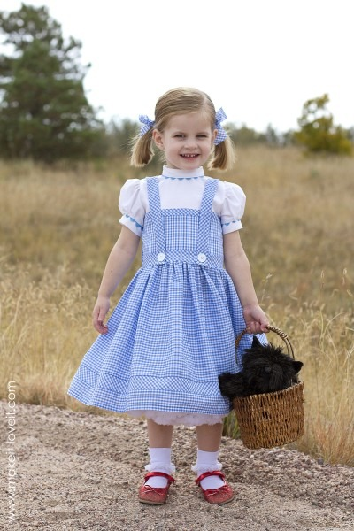 A Hoop Skirt (…a Sturdy And Inexpensive Version) – Make It And Love It