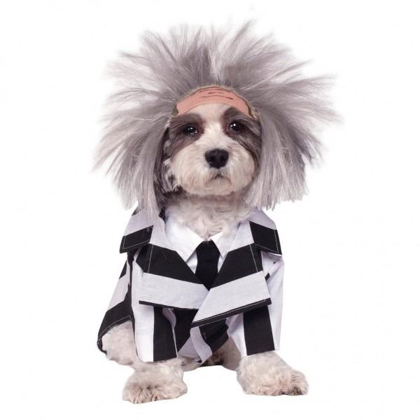 Dog Halloween Costumes 2018
