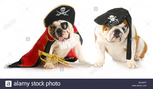 Dog Pirates