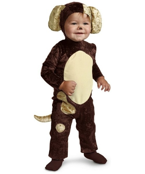 Dog Baby Pet Costume