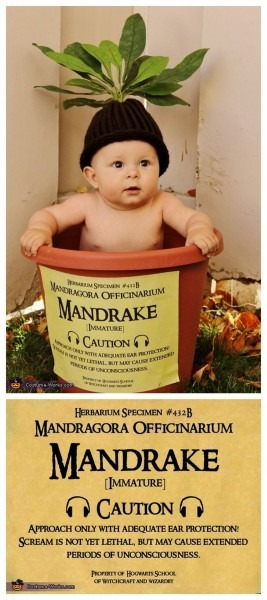 Diy Harry Potter Mandrake Baby Costume From Costume Works The