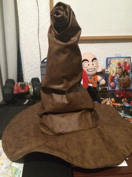 Wizarding World Sorting Hat  4 Steps (with Pictures)