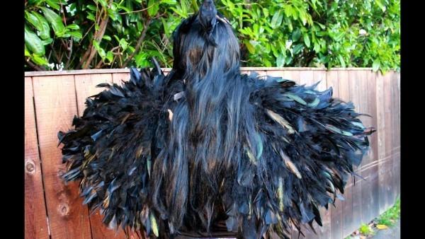 Diy Black Costume Wings