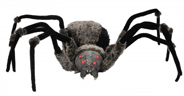 All About Spider Costumes For Halloween And More