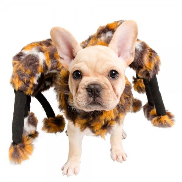 Pet Krewe Scary Spider Cat Costume
