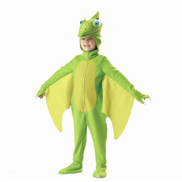 Toddler Dinosaur Halloween Costume New Dinosaur Train Tiny Costume