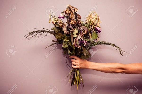 A Woman's Hand Is Holding A Bouquet Of Dead Flowers Stock Photo