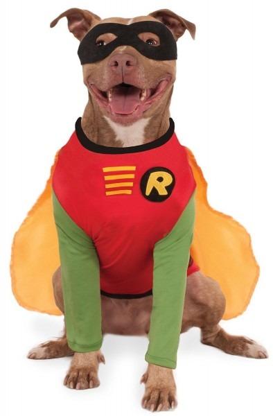 Batman Or Robin Dog Costume – Sizes S