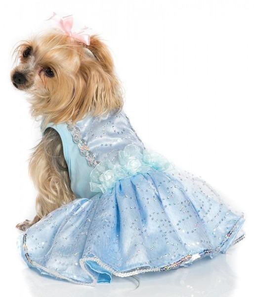 Pawpatu Cinderella Costume For Dogs