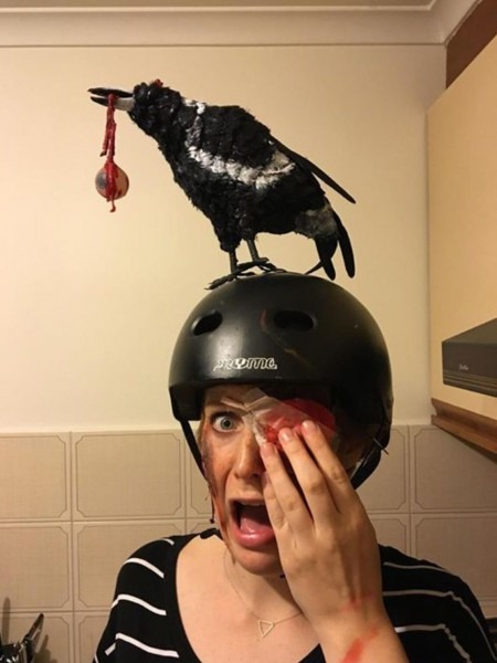 Magpie Swooping Halloween Costume All Aussies Will Understand