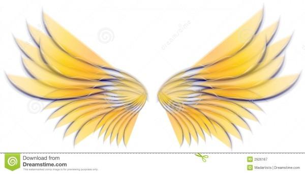 Angel Bird Or Fairy Wings 3 Stock Illustration