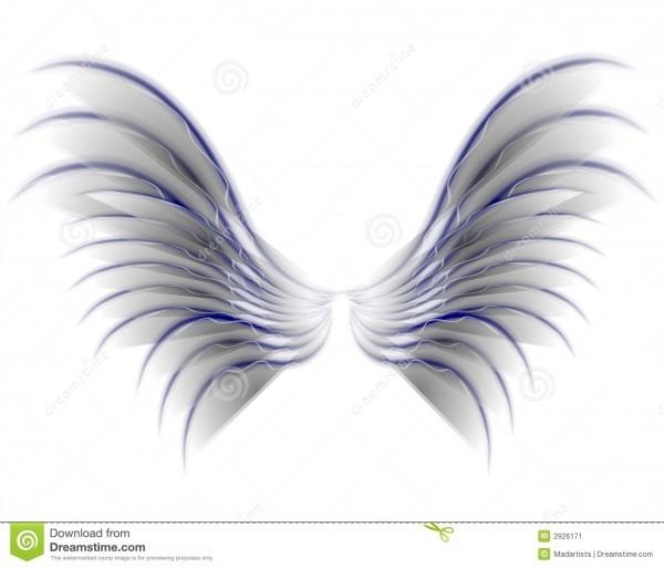 Angel Bird Or Fairy Wings Grey Stock Illustration