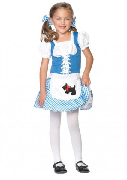 Darling Dorothy Wizard Of Oz Child Costume, X