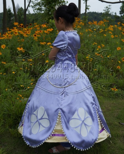 Free Shipping New Adult Clothing Dress Sofia The First Dress
