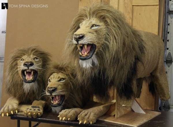Custom Realistic Lion Puppets For Stage Production