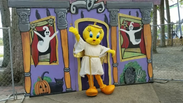 Trick Or Treat Trail Looney Tunes Characters In Halloween Costumes