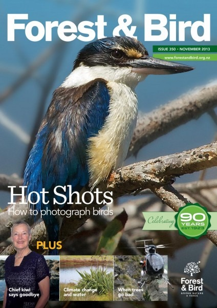 Forest & Bird Magazine 350 Nov 2013 By Forest & Bird