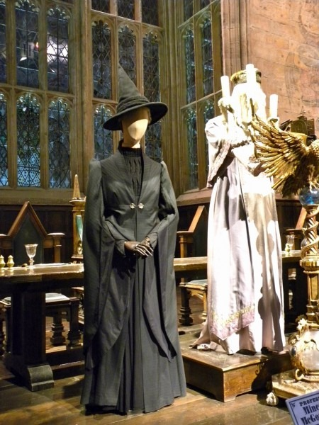 Professor Mcgonagall Costume Awesome Ficially Licensed Harry
