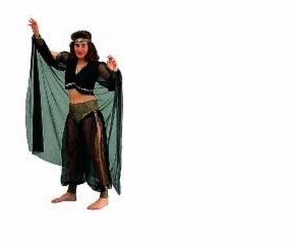 Rg Costumes 86095 Arabian Queen Costume