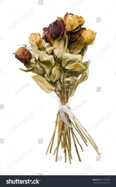 Bouquet Dead Roses Stock Photo (edit Now) 355139570